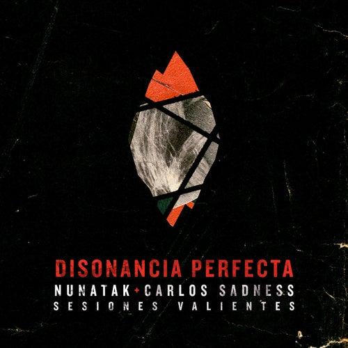 Disonancia perfecta (feat. Carlos Sadness)