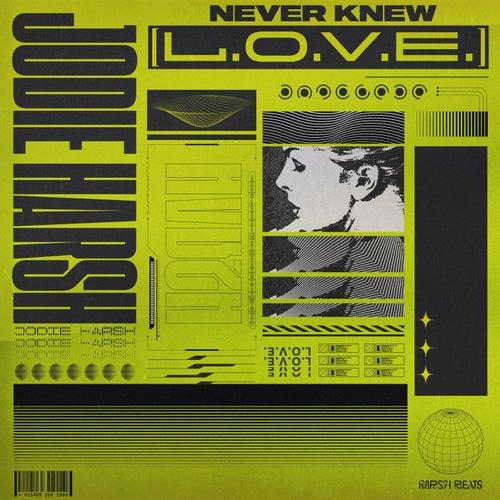 Never Knew (L.O.V.E)