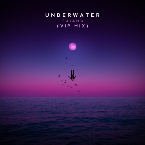 Underwater (VIP Mix)