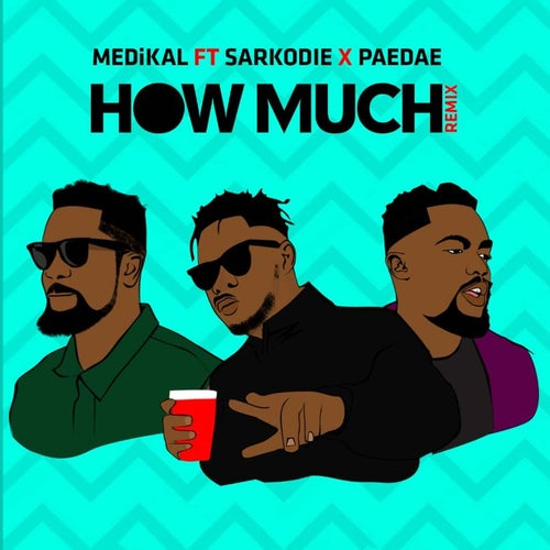 How Much (feat. Sarkodie & Paedae) [Remix]