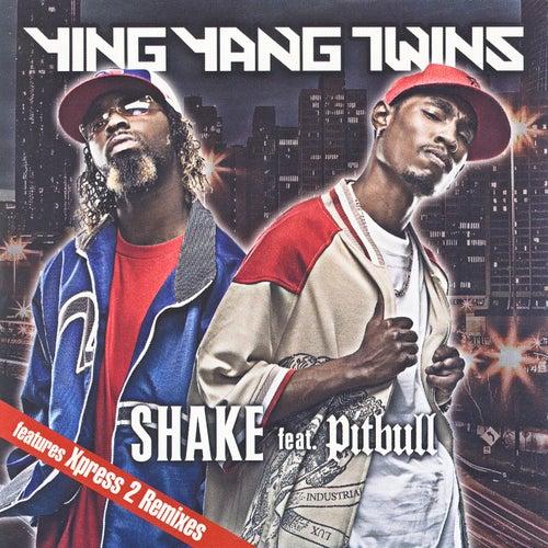 Shake (Album Version)