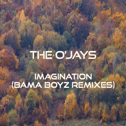 Imagination (Bama Boyz Remixes)