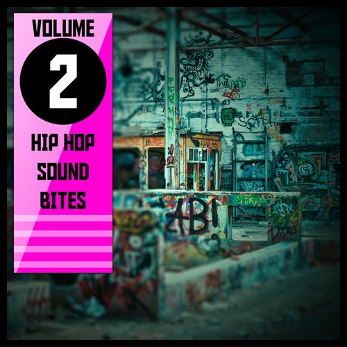 Hip Hop Sound Bites,Vol.2
