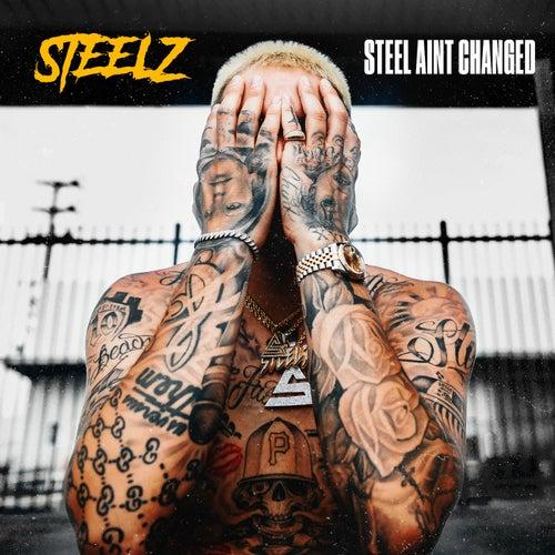 Steel Ratchet