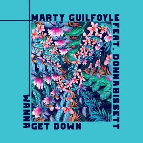 Wanna Get Down (VIP Remix)