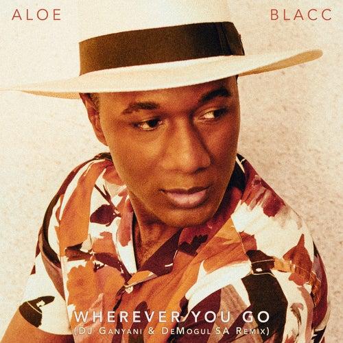 Wherever You Go (DJ Ganyani & De Mogul SA Remix)