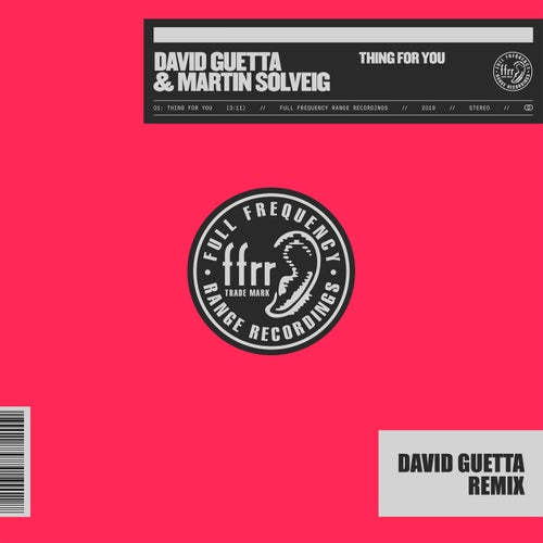 Thing For You (David Guetta Remix)