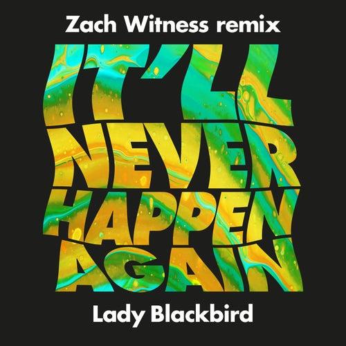 It'll Never Happen Again (Zach Witness Remix)