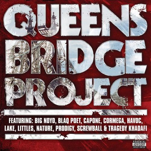 Queensbridge Project