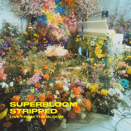 SUPERBLOOM (stripped) [live from the bloom]