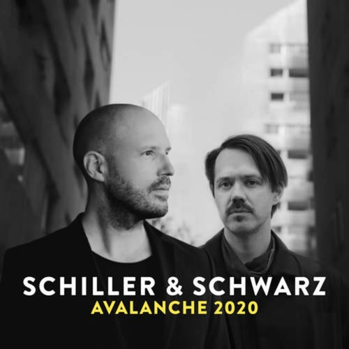 Avalanche 2020