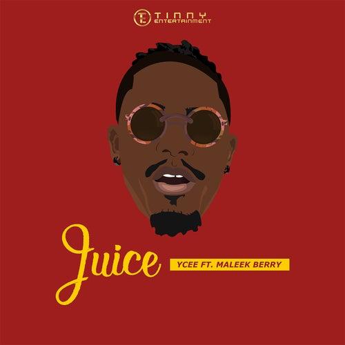 Juice feat. Maleek Berry