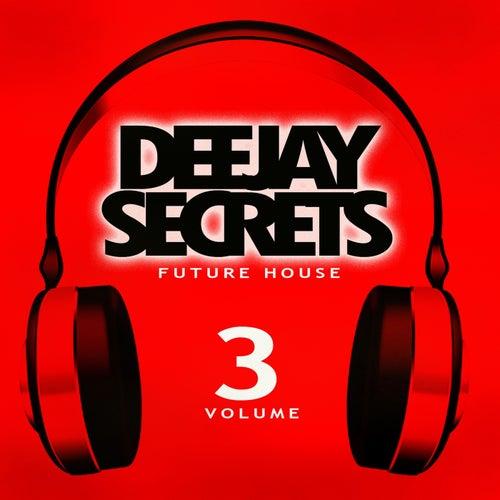 Deejay Secrets - Future House, Vol. 3