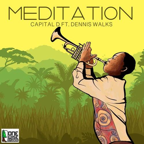 Meditation (feat. Dennis Walks)