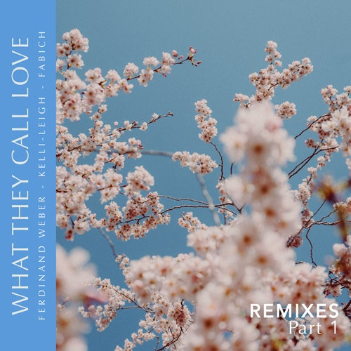 What They Call Love Remixes, Pt.1