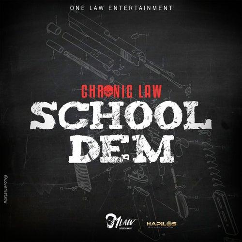 School Dem