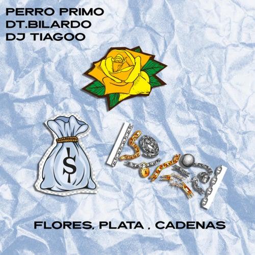 Flores, Plata, Cadenas