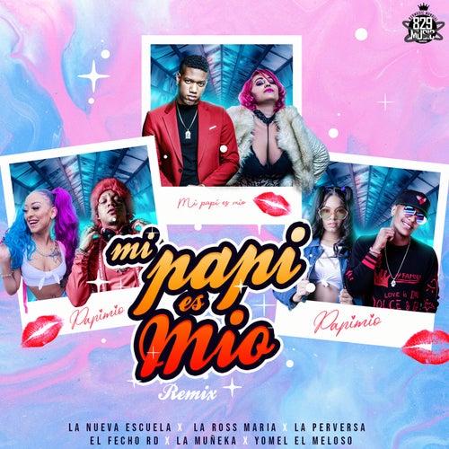 Mi Papi Es Mio (feat. El Fecho RD, La Muñeka & Yomel El Meloso) [Remix]