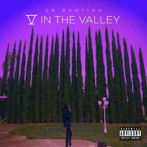 5 in the Valley