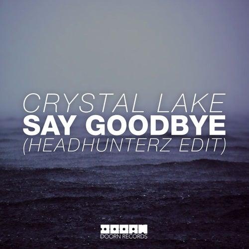 Say Goodbye (Headhunterz Edit)