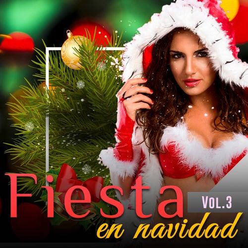 Fiesta en Navidad, Vol. 3