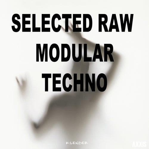 Selected Raw Modular Techno