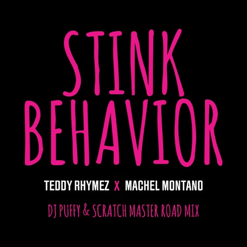 Stink Behavior (DJ Puffy & Scratch Master Road Mix)