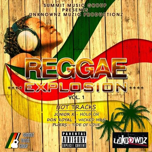 Reggae Explosion Vol. 1