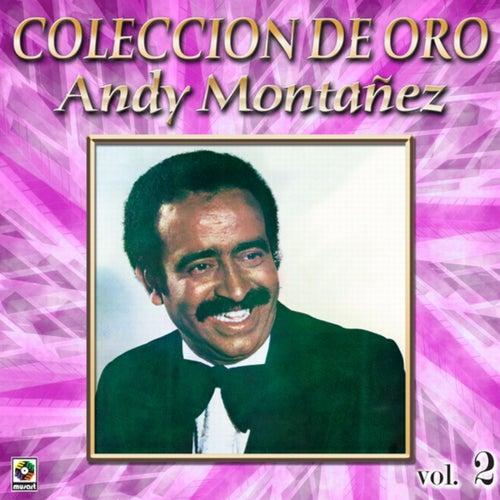 Colección de Oro: El Espectacular Andy Montañez, Vol. 2
