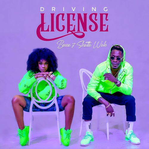 Driving License (feat. Shatta Wale)