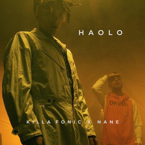 Haolo