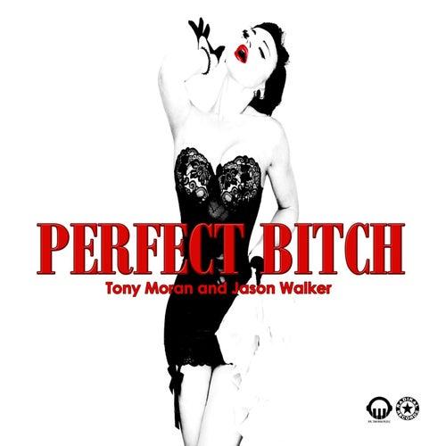 Perfect Bitch