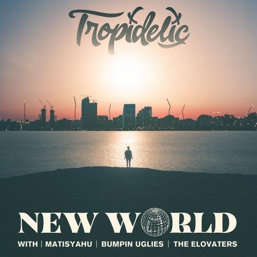 New World (feat. Matisyahu, Bumpin Uglies & The Elovaters)