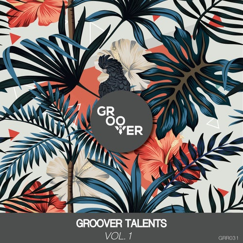 Groover Talents Vol.1 (Extended Mix)