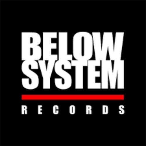 Below System Records Profile