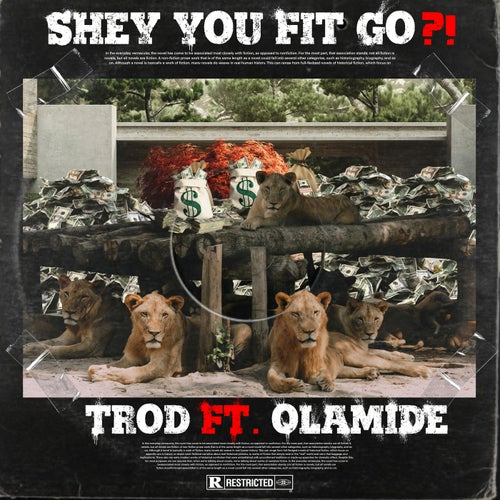 Shey You Fit Go?!