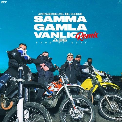 Samma gamla vanliga (feat. A36) [Remix]