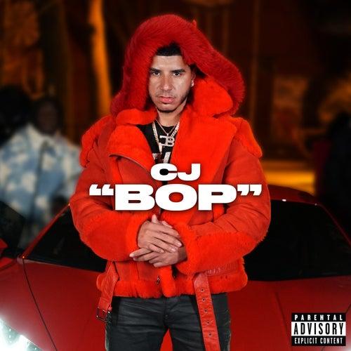 """BOP"""