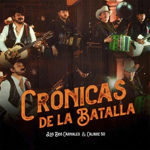 Cronicas de la Batalla