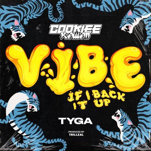 Vibe (If I Back It Up) [TrillzAL Remix]