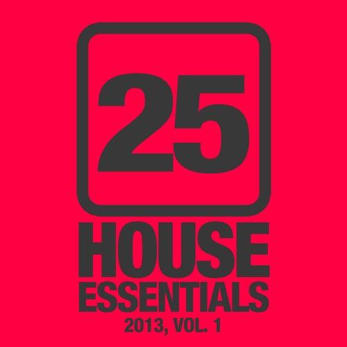 25 House Essentials 2013, Vol. 1