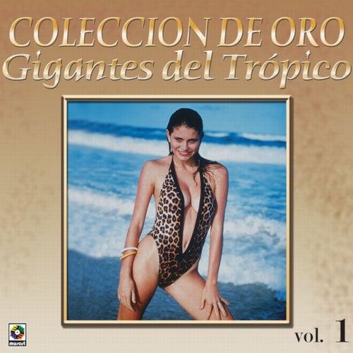 Colección De Oro: Gigantes Del Trópico, Vol. 1