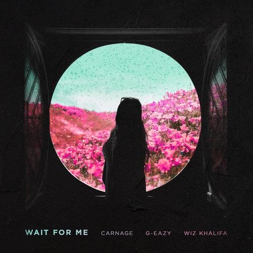 Wait For Me (feat. G-Eazy & Wiz Khalifa)