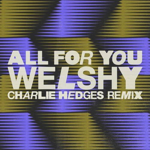 All for You (Charlie Hedges Remix)