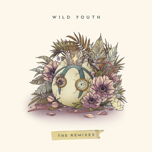Wild Youth (The Remixes)