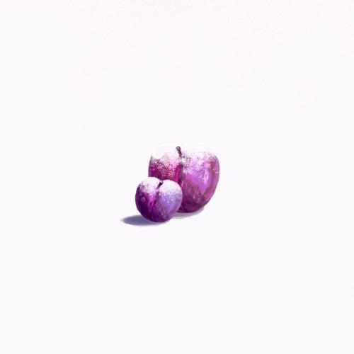 Sugarplum Elegy