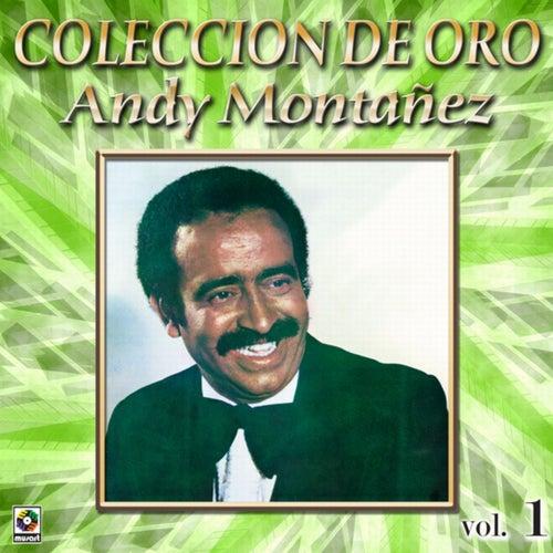 Colección de Oro: El Espectacular Andy Montañez, Vol. 1
