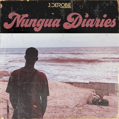 Nungua Diaries