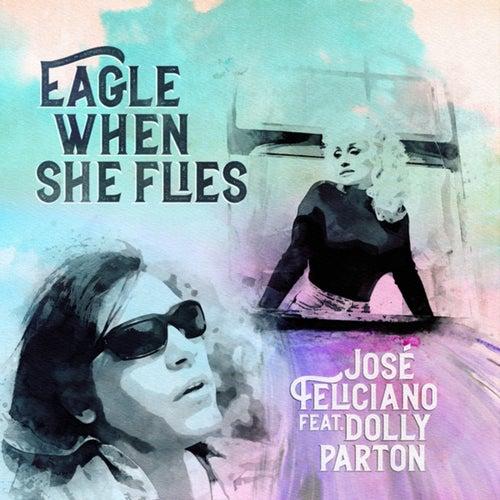 Eagle When She Flies