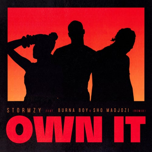 Own It (feat. Burna Boy & Sho Madjozi) [Remix]